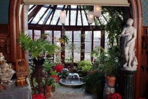 Маленькая оранжерея у вас дома