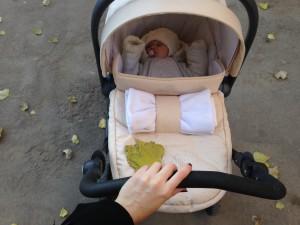 Как купить идеальную коляску Cam для малыша?