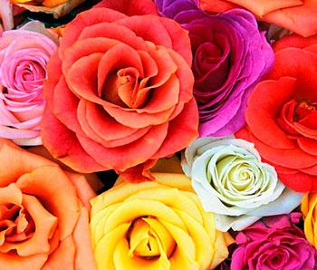 Купить цветы онлайн