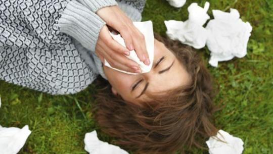 Лечение аллергии на амброзию с помощью народных методов