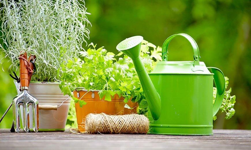 Что необходимо знать при выборе садовых товаров